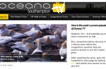 Oceana Southampton TV Facebook Application